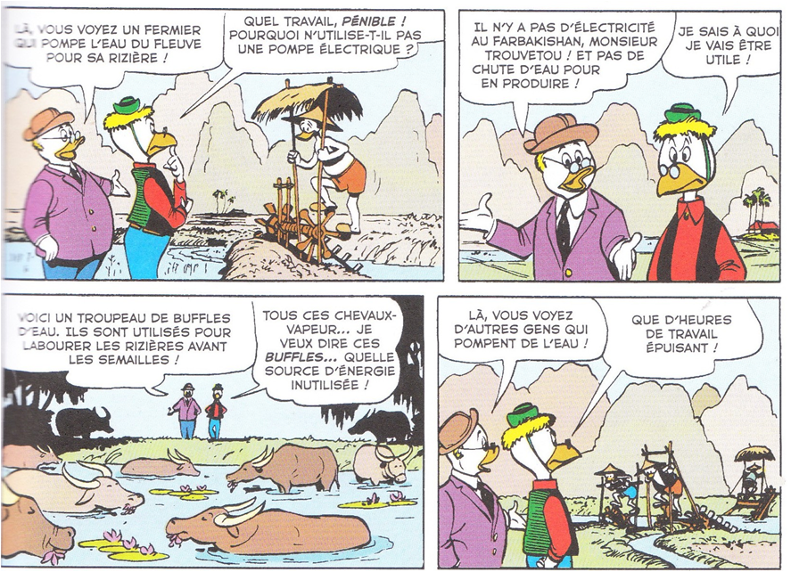 Bluffe par les buffles 6